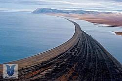 Đảo Wrangel