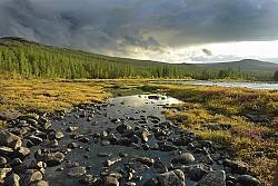 Một thoáng Siberia