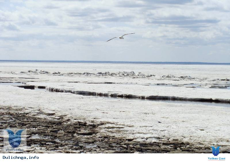 Biển Trắng và Pomor,bien trang va pomor, du lich nga